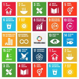 Support The Global Goals